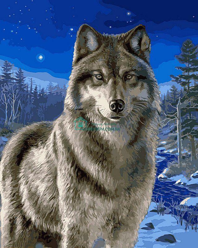 VP467 Раскраска по номерам Волк в зимнем лесу ТМ Babylon ...