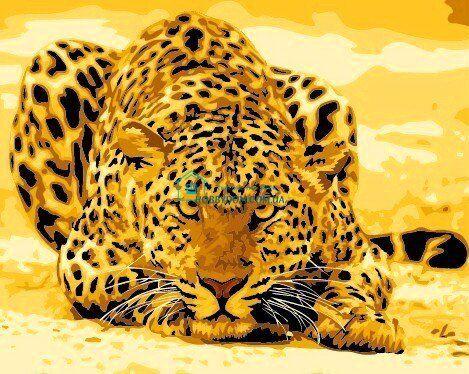 КНО305 Раскраска по номерам Леопард притаился ТМ Идейка ...