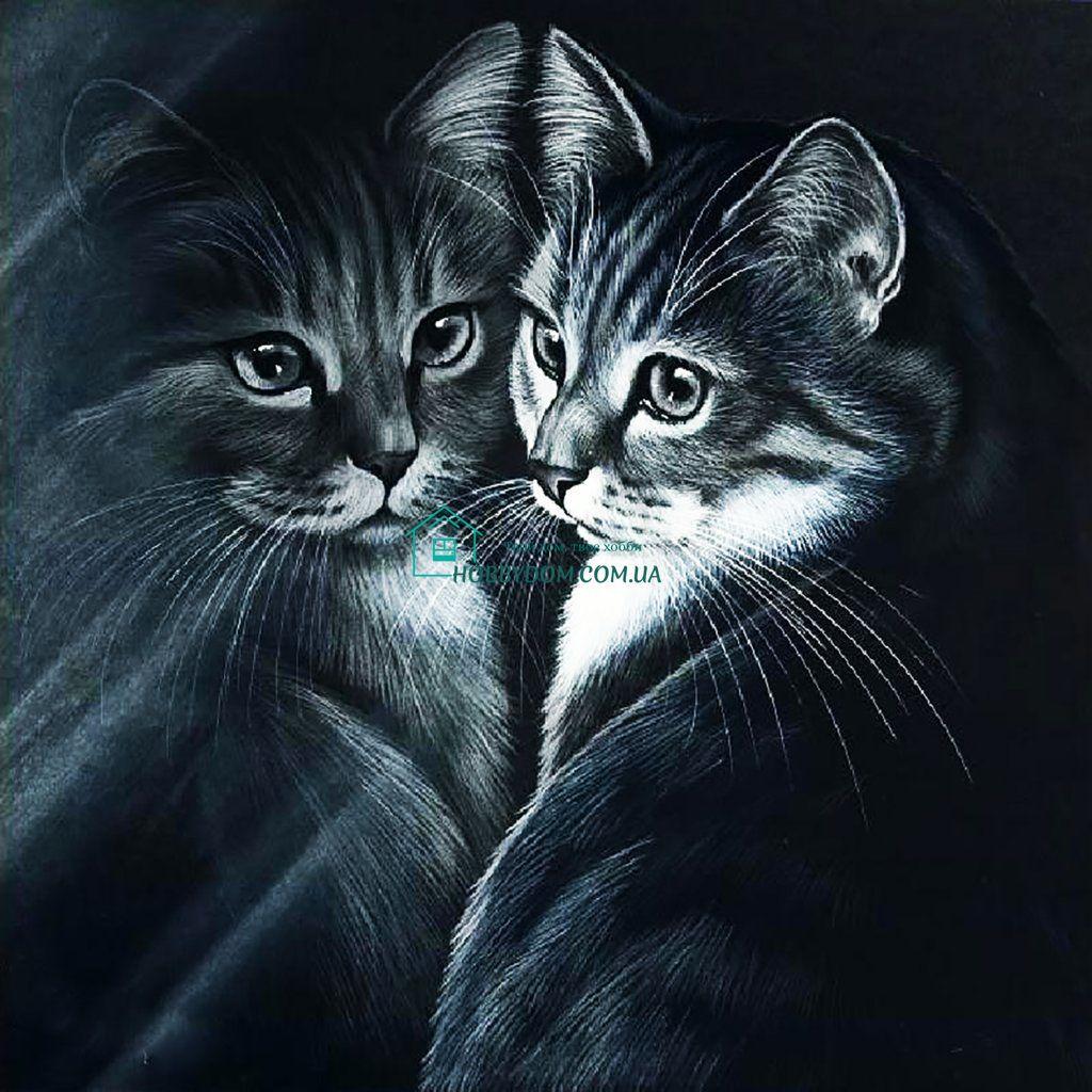 супруги картинки для декупажа котики черно белые объявления