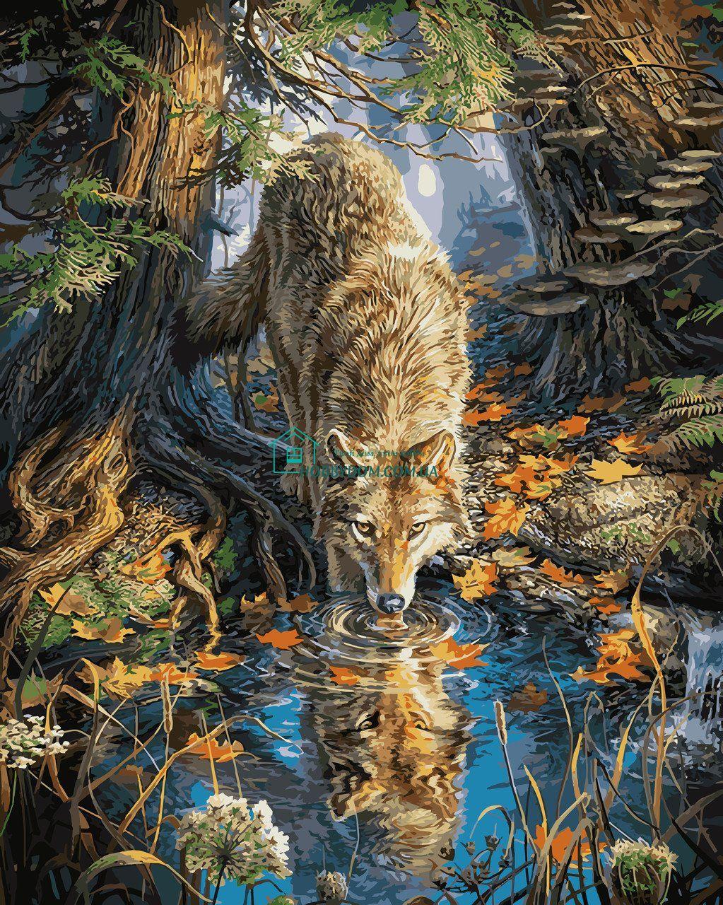 VP930 Раскраска по номерам Волк на водопое ТМ Babylon 298 ...
