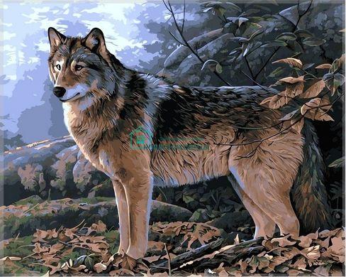 VP346 Раскраска по номерам Волк в осеннем лесу ТМ Babylon ...